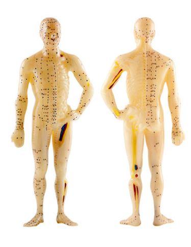 Akupunktur in der Chirurgie Germering von Dr. med. Markus Schorr
